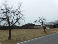 Prodej pozemku 16704 m², Oskava