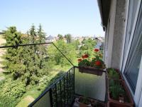 v okolí domu je spousta zeleně (Prodej bytu 3+kk v osobním vlastnictví 70 m², Olomouc)