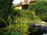 Prodej domu v osobním vlastnictví 376 m², Dlouhá Loučka
