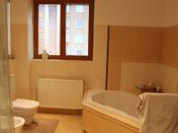 koupelna 1 patro (Prodej domu v osobním vlastnictví 240 m², Olomouc)