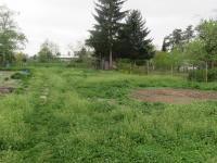 zahrada - Prodej domu v osobním vlastnictví 427 m², Olomouc