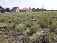 Prodej pozemku, 1239 m2, Lutín
