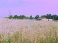 Prodej pozemku 1672 m², Havířov