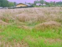 Prodej pozemku 780 m², Havířov