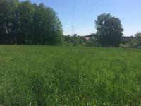 Prodej pozemku 1623 m², Šenov