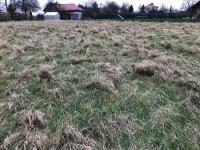 Prodej pozemku 2246 m², Šenov