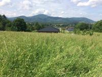 Prodej pozemku 3150 m², Hrádek