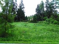 Prodej pozemku 1265 m², Valšov