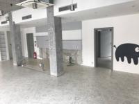 Pronájem jiných prostor 167 m², Havířov