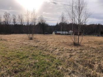 Prodej pozemku 3387 m², Albrechtice (ID 158-N01902)