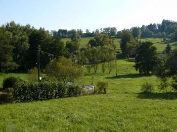Prodej pozemku 6336 m², Borovnička