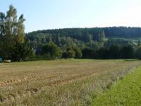 Prodej pozemku 25118 m², Borovnička