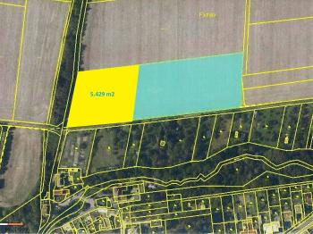 Prodej pozemku 5429 m², Dolany