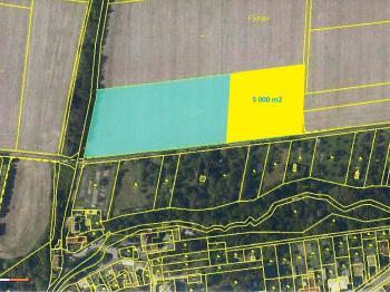Prodej pozemku 10429 m², Dolany