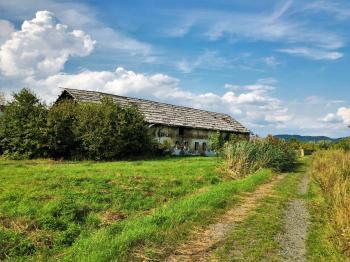 Zemědělská usedlost na prodej, Vražné