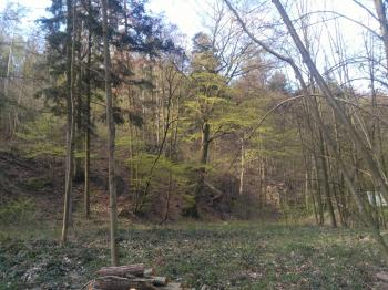 Prodej pozemku 1526 m², Dolany