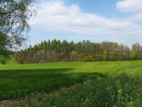 Prodej pozemku 25125 m², Horní Třešňovec