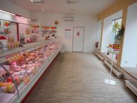 Pronájem komerčního objektu 100 m², Slavkov u Brna