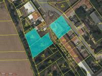 Prodej pozemku, 1293 m2, Pavlovice u Kojetína