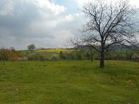 Prodej pozemku 2296 m², Němčany