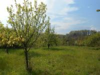 Prodej pozemku 2392 m², Dobročkovice