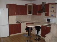Pronájem bytu 1+kk v osobním vlastnictví 35 m², Slavkov u Brna