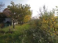 Prodej domu v osobním vlastnictví 357 m², Kyjov