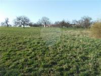 Prodej pozemku 8775 m², Heršpice
