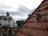 střešní krytina bobrovka (Prodej komerčního objektu 594 m², Břeclav)