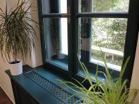 detail okno, dřevěná eurookna (Prodej komerčního objektu 594 m², Břeclav)