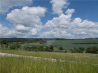 Prodej pozemku 1368 m², Viničné Šumice