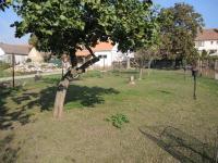 zahrada (Prodej domu v osobním vlastnictví 250 m², Sedlec)