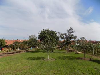 pohled ze zadní části zahrady - Prodej pozemku 1520 m², Dolní Dunajovice
