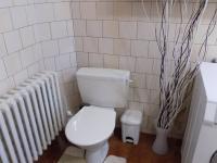 WC s koupelnou v přízemí - Prodej domu v osobním vlastnictví 250 m², Svatobořice-Mistřín
