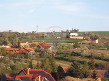 Prodej pozemku 9780 m², Heršpice