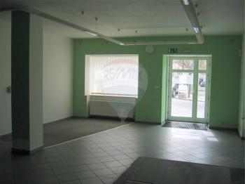 Vstupní dveře. - Pronájem komerčního objektu 345 m², Příbram