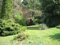 Zahrada. (Prodej chaty / chalupy 109 m², Nové Dvory)
