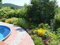 bazén s živým plotem v létě - Prodej domu v osobním vlastnictví 230 m², Jince