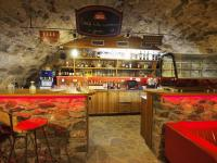 Bar (Prodej domu 600 m², Tábor)