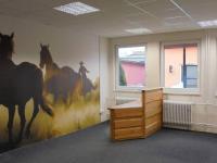 Pronájem kancelářských prostor 51 m², Sedlčany