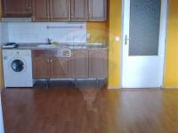 Pronájem bytu 1+kk v osobním vlastnictví 31 m², Všemyslice