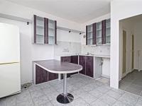 kuchyně - Pronájem bytu 1+1 v osobním vlastnictví 39 m², Plzeň