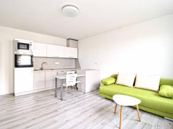 Pronájem bytu 2+kk v osobním vlastnictví 99 m², Plzeň