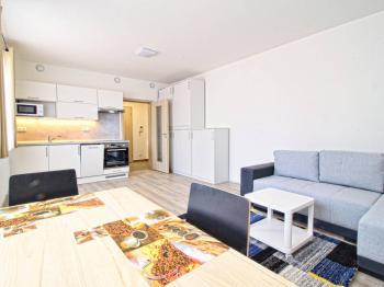 pokoj - Pronájem bytu 1+kk v osobním vlastnictví 35 m², Plzeň