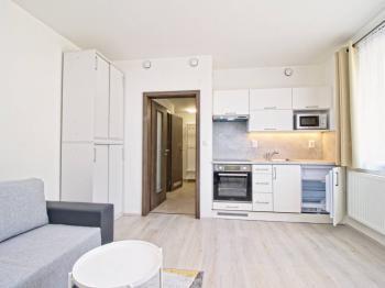 pokoj - Pronájem bytu 1+kk v osobním vlastnictví 29 m², Plzeň