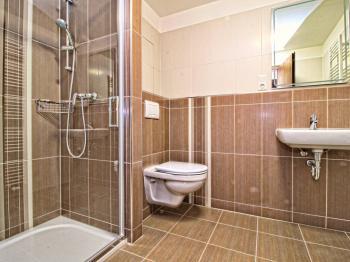 koupelna s WC - Pronájem bytu 1+kk v osobním vlastnictví 29 m², Plzeň