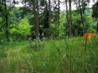 Prodej pozemku 13796 m², Tábor