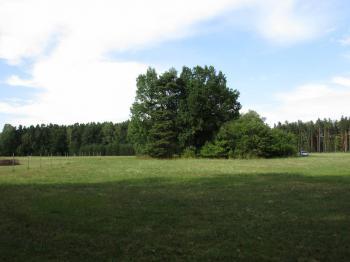 Prodej pozemku 11557 m², Rapšach