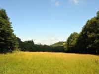 Prodej pozemku 24500 m², Strašín