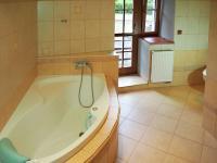 Koupelna v přízemí - Prodej chaty / chalupy 650 m², Blažejov